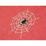 【参考商品】オーダー背守りTee Mitakuye Oyasin + Spider Trap 濃赤杢
